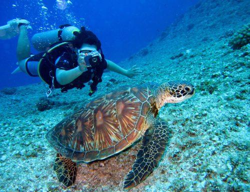 Betrouwbare duikflessen voor een geslaagde duik